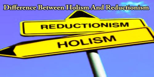 Difference Between Holism And Reductionism