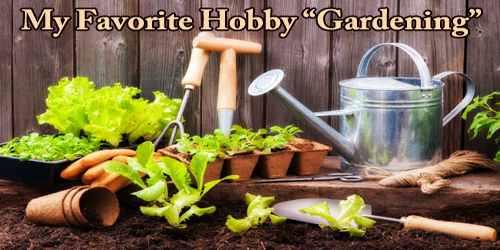 """My Favorite Hobby """"Gardening"""""""