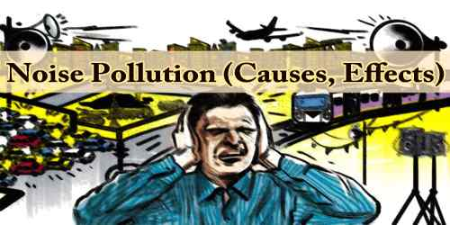 Noise Pollution (Causes, Effects)