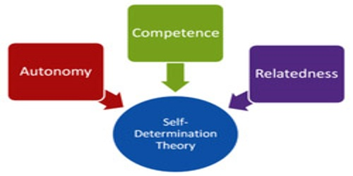 Self Determination Theory (Basic Theory)