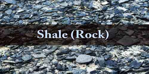 Shale (Rock)
