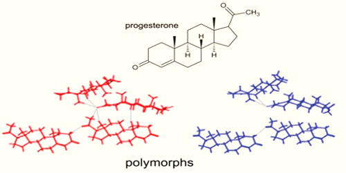 Polymorphism in Materials Science