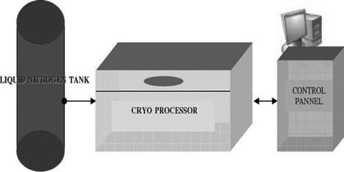 Cryogenic Processor