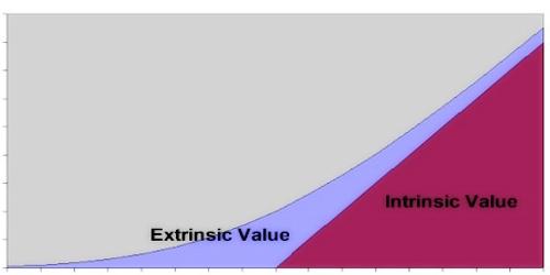 Extrinsic Value