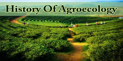 History Of Agroecology