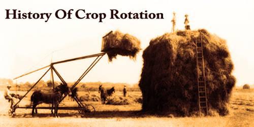 History Of Crop Rotation