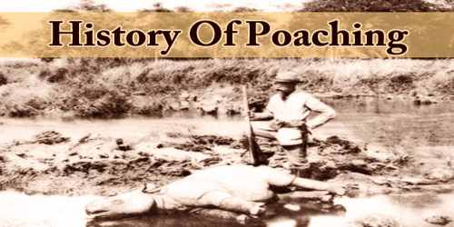 History Of Poaching