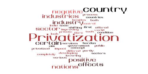 Privatization