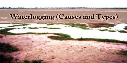 Waterlogging (Causes and Types)