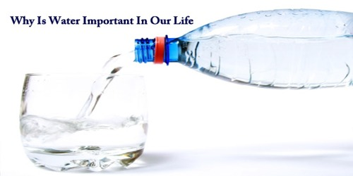 Why Is Water Important In Our Life