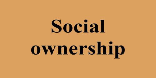Social Ownership In Economics