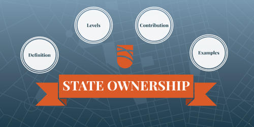 State Ownership in Economics