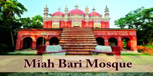 A Visit To A Historical Place/Building (Miah Bari Mosque)