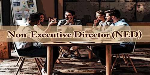 Non-Executive Director (NED)