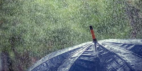 Well and Woe of Rainy Season