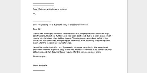 Request Letter for Official Document