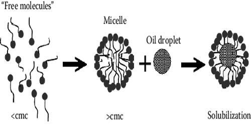 Micellar Solubilization