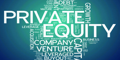 Private Equity (PE)