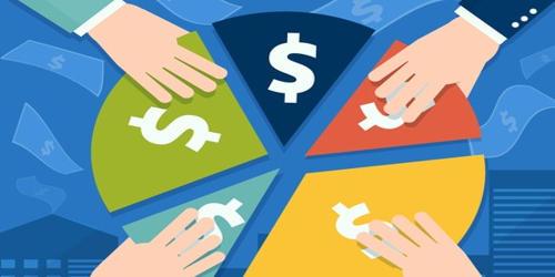 Shareholder Loan