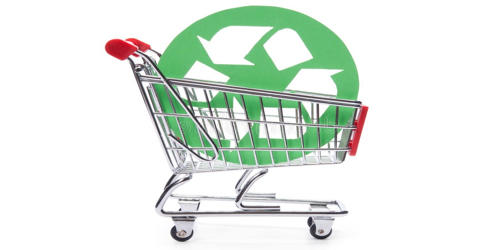 Ethical Consumerism Activity