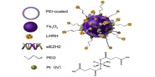 Iron-platinum Nanoparticles