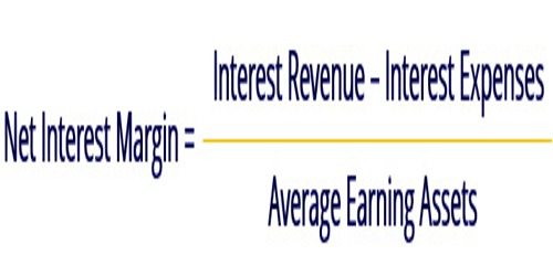 Net Interest Margin (NIM)