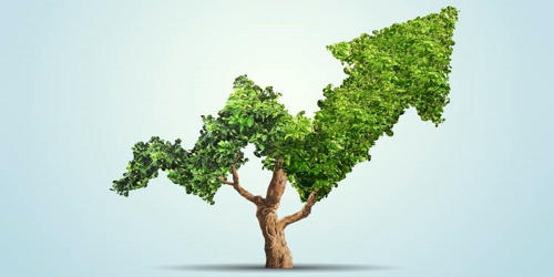 Socially Responsible Investing (SRI)