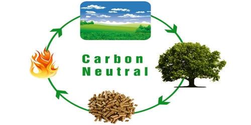 Carbon-neutral Fuel