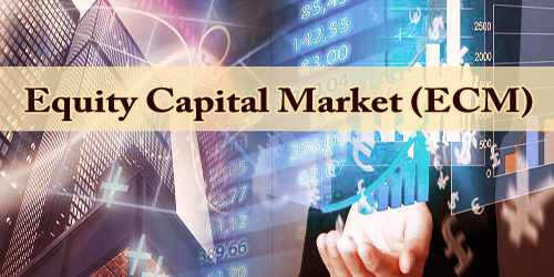 Equity Capital Market (ECM)