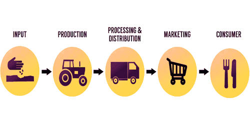 Agricultural Value Chain