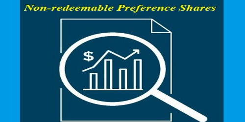 Non-Redeemable Preference Shares