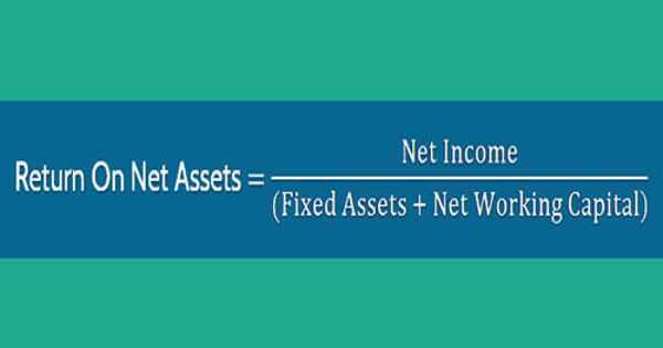 Return on Net Assets