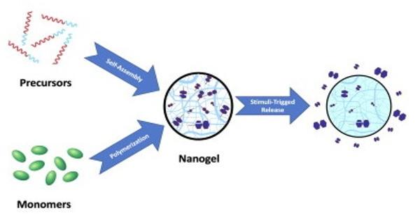 Nanogel