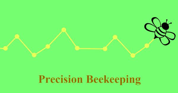 Precision Beekeeping