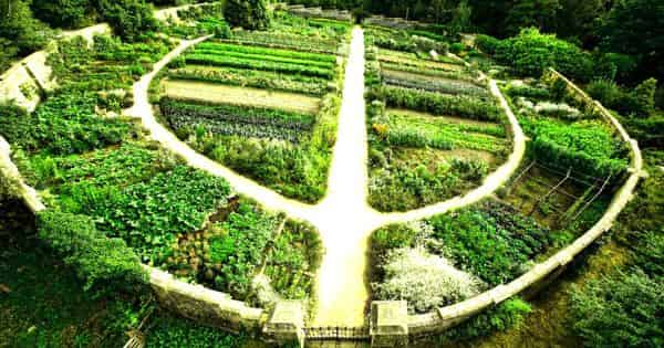 Permaculture – an innovative framework
