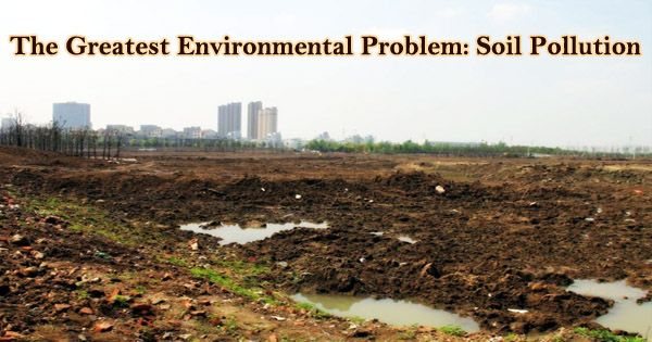 The Greatest Environmental Problem: Soil Pollution