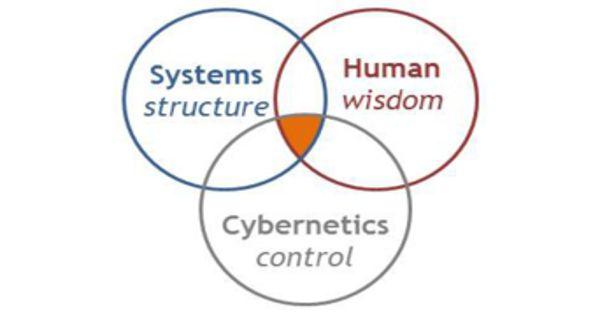 Cybernetics – a transdisciplinary approach