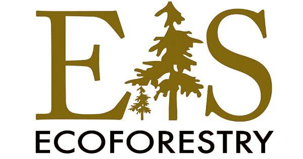 Mycoforestry