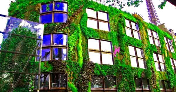 Green Wall – a vertical greening typology