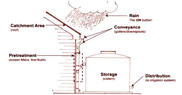 Rainwater Harvesting – a sustainable process for preserving water