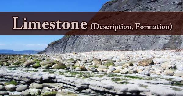 Limestone (Description, Formation)