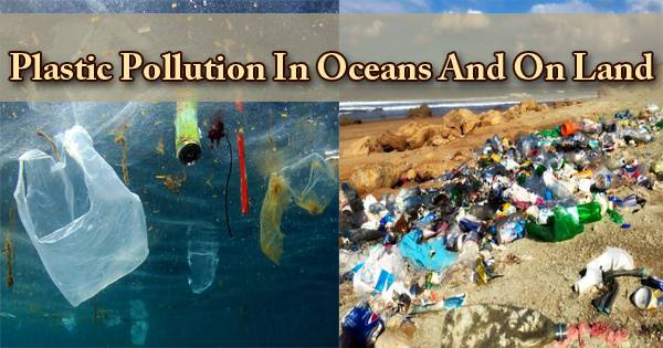 Plastic Pollution In Oceans And On Land