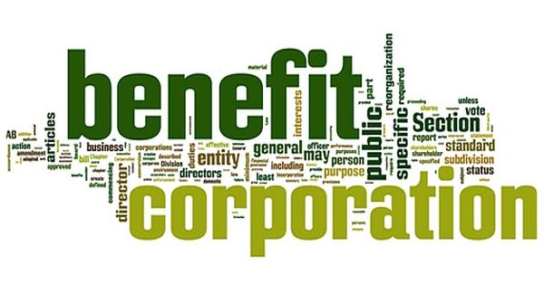 Public-benefit corporations – a specific type of corporation