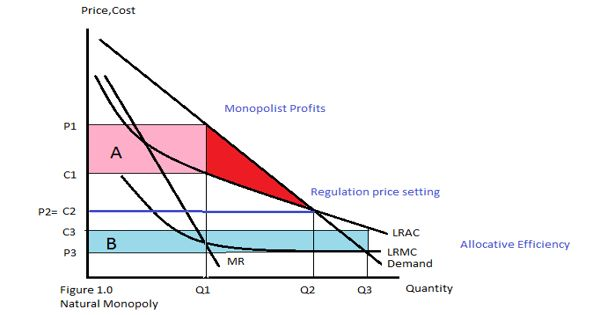 Natural Monopoly – a monopoly in an industry