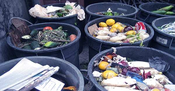 According To New Study, the Average American Wastes over a Quarter of the Food They Buy