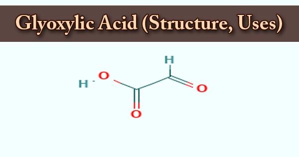 Glyoxylic Acid (Structure, Uses)