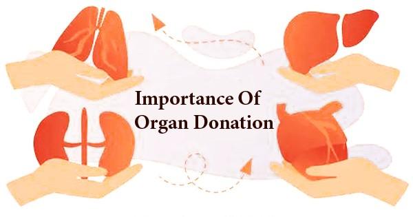 Importance Of Organ Donation