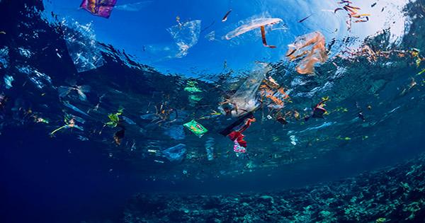 Largest Ever Ocean Clean-Up Recovers Over 100 Tons of Plastic Trash and Fishing Nets