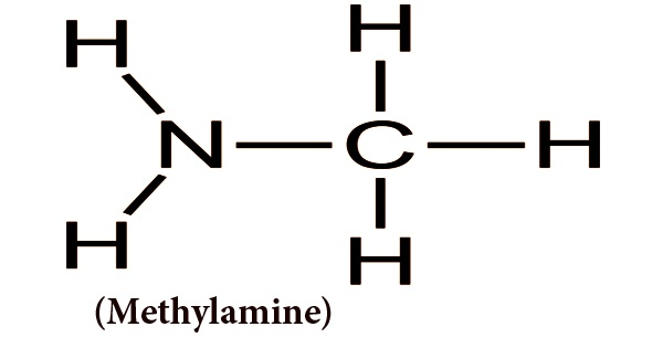 Methylamine (Production, Uses)