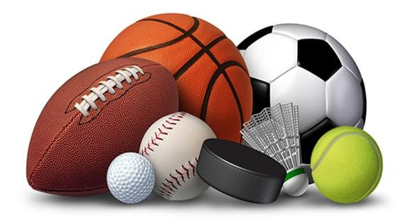 Professionalism in Sport